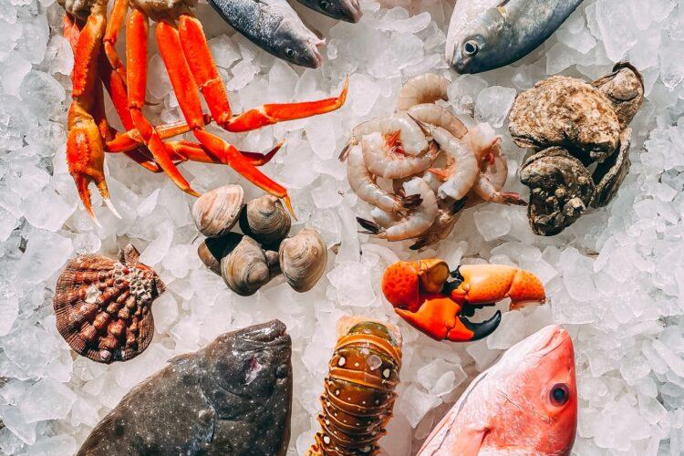 Wie lange kann man Fisch einfrieren?